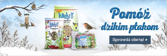 Lillebro dla dzikich ptaków